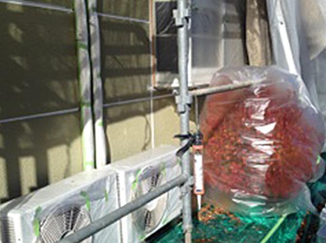 塗装しない箇所は植栽なども養生する事があります。