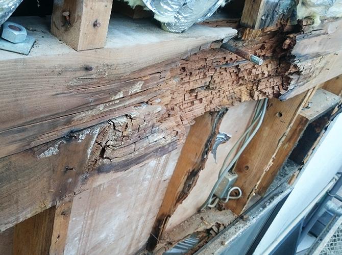 2階と3階の間の梁が雨漏りの影響で腐食しています。