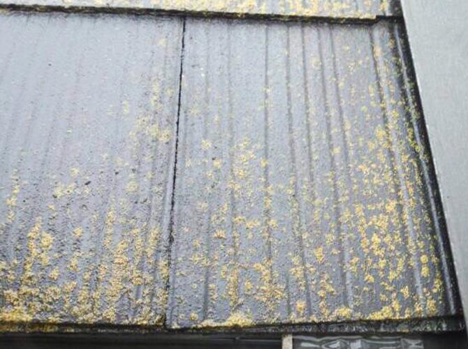 屋根の高圧洗浄の施工前のようすです。