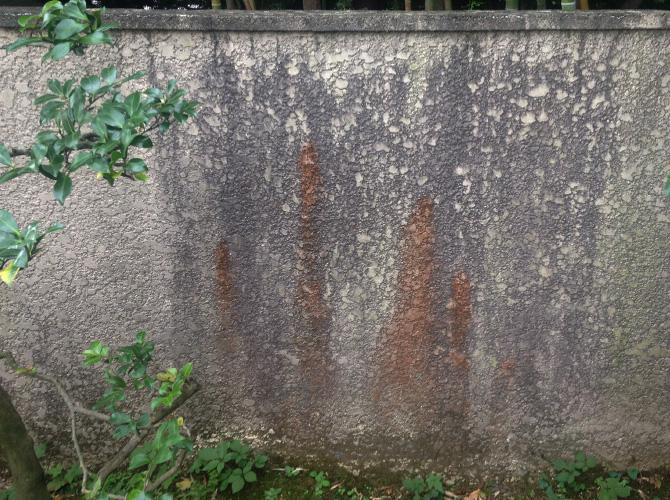 擁壁の洗浄前