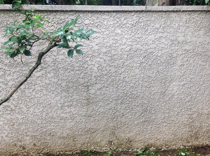擁壁の洗浄後