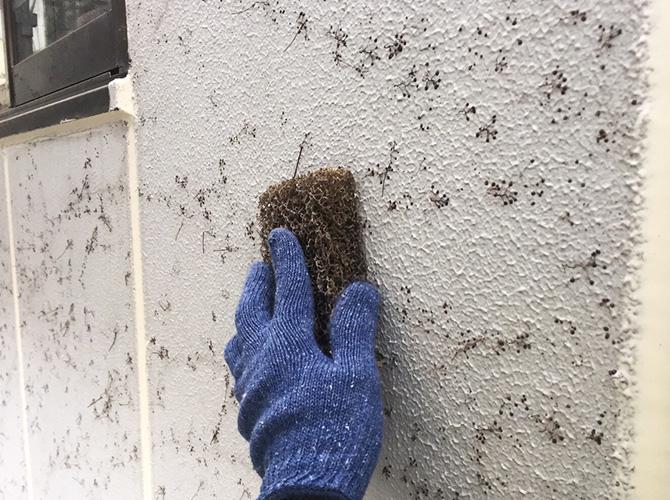 外壁のケレン清掃