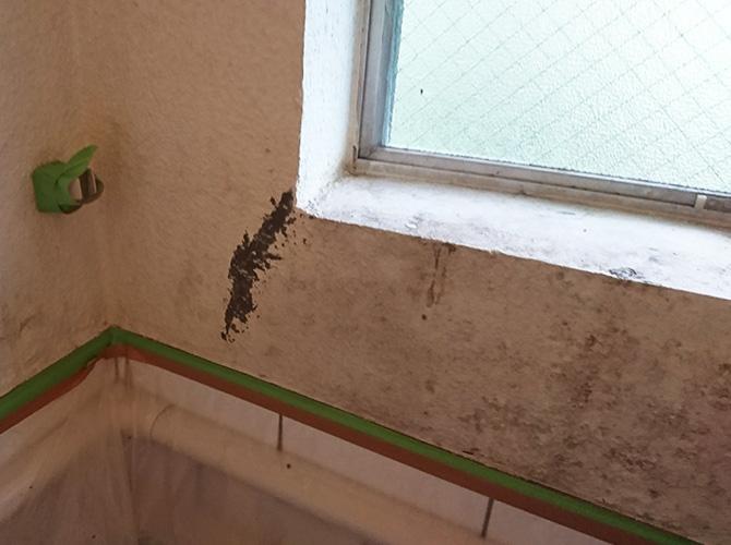 浴室壁の下地補修