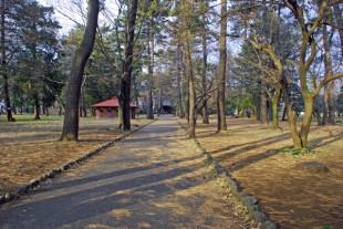 小金井市の公園