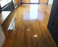 東京都新宿区マンション内装の塗装工事の施工事例